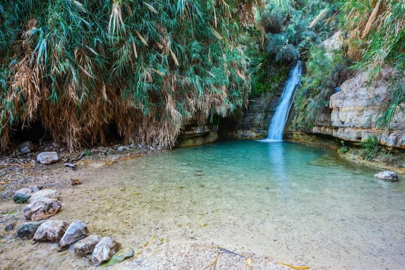 Private Masada, Ein Gedi And Dead Sea Tour 6