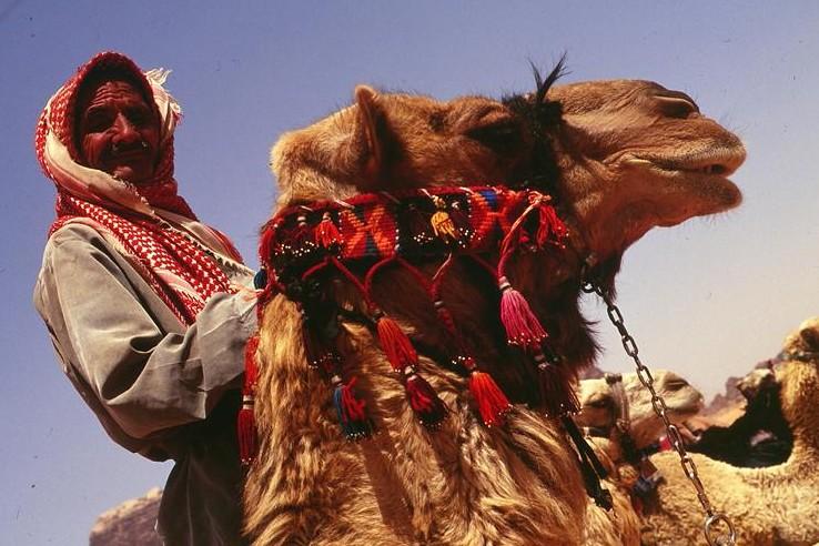 Wadi Rum 7 E1443087375595
