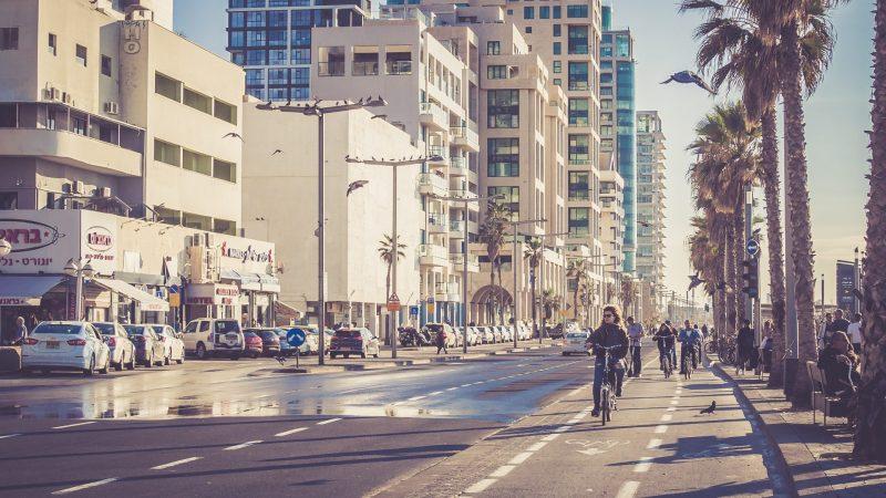Bird Scooters In Tel Aviv