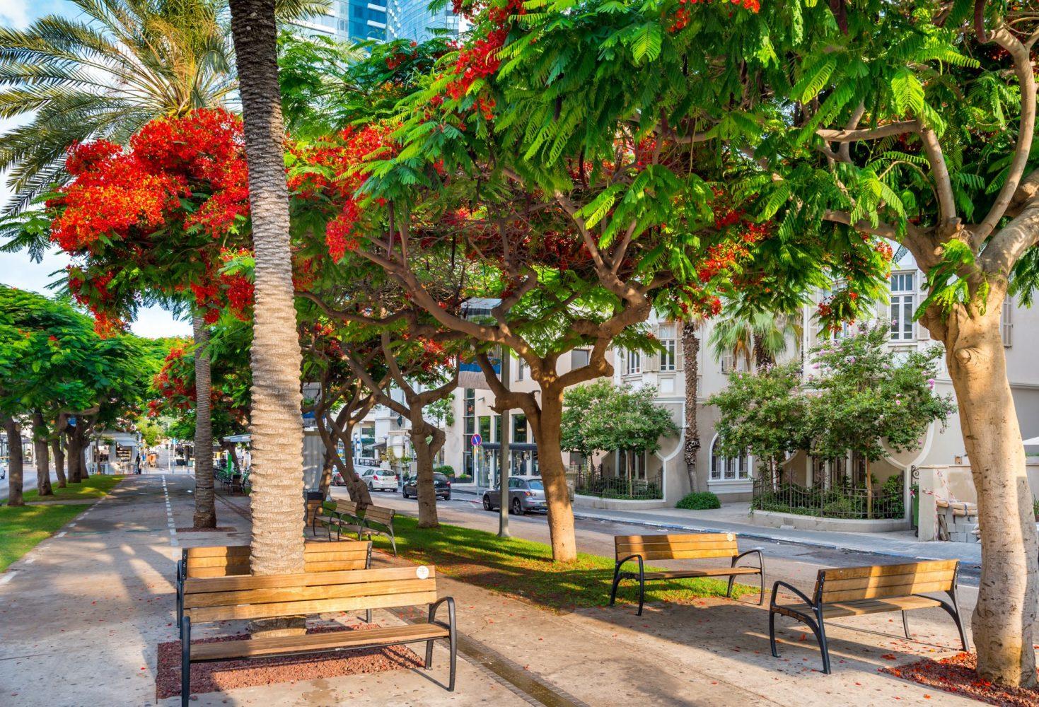 Best area to stay in Tel Aviv