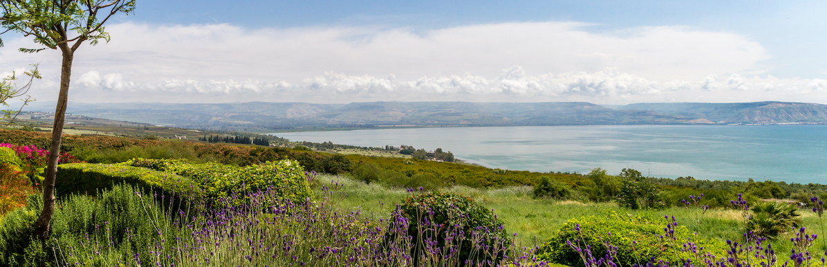 Events In The North & Galilee