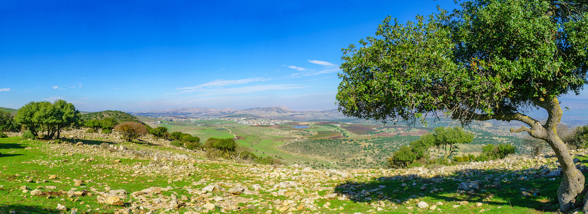 Cultures Of The Galilee