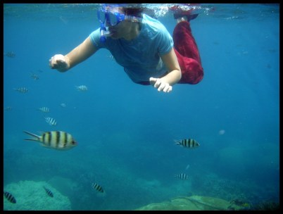 Thaïlande, nature, mer, apnée, poissons, voyage, trip, Asie