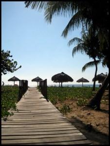 Cuba, plage, mer, soleil, palmier,voyage,