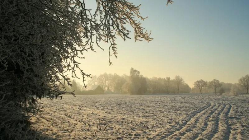 Witte Winterwandeling