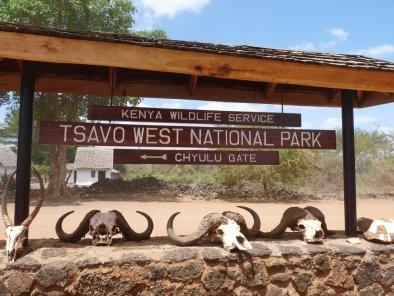 tourite safaris - tsavo