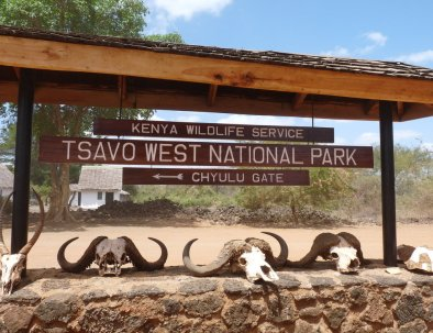 tourite safaris - tsavo