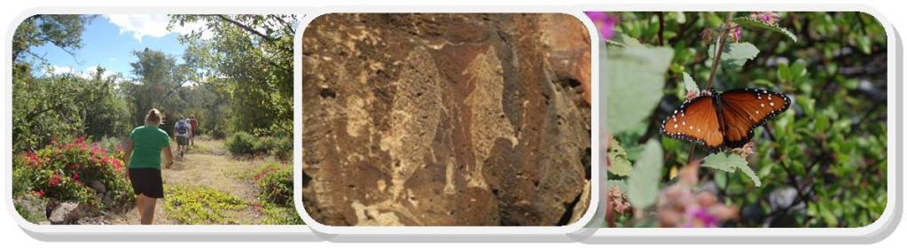 cave paintings, BCS