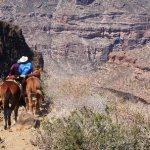 Cave Paintings, Mule Trips Baja California
