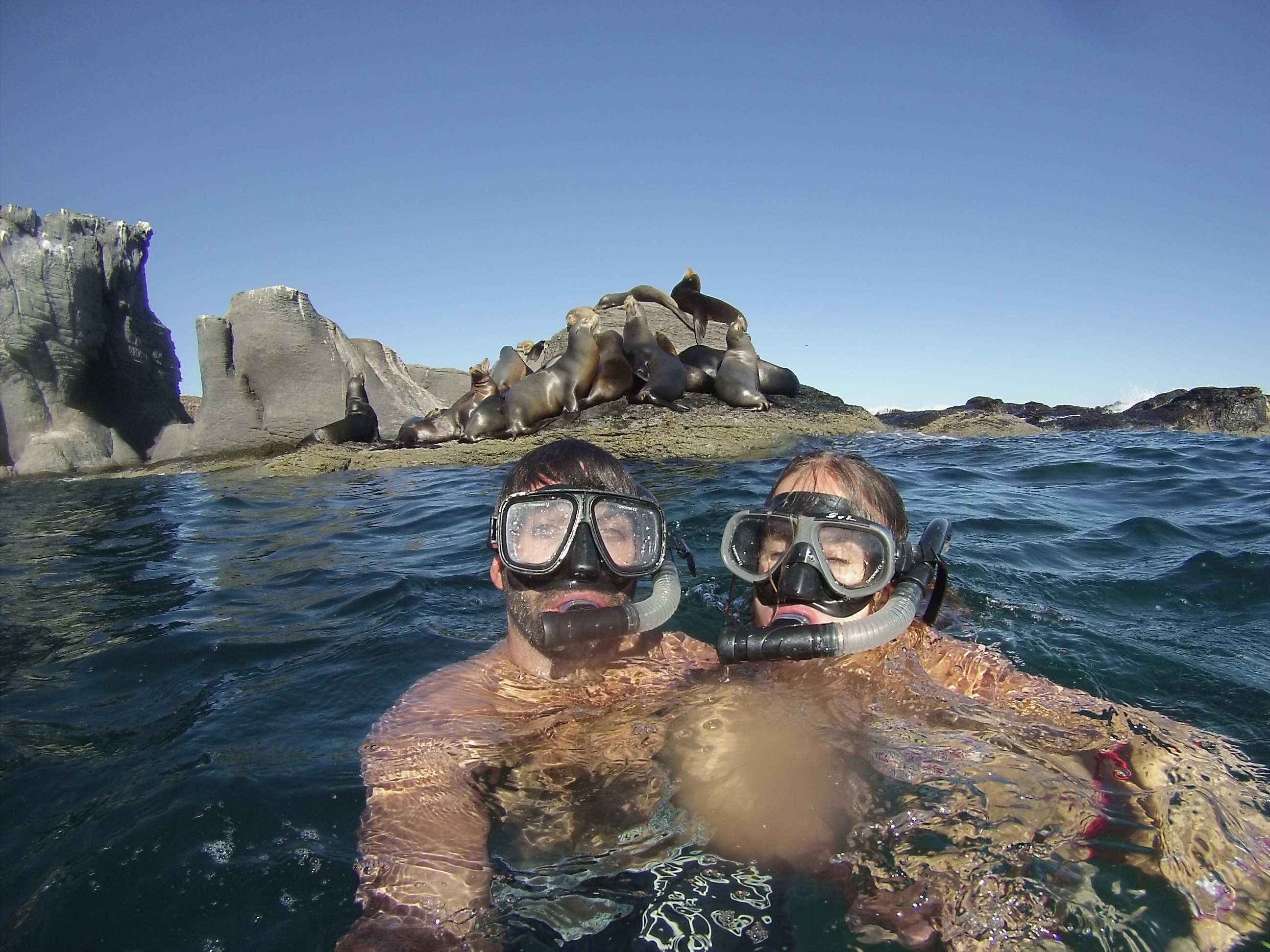 Snorkeling with Sea Lions at Coronado Island, Loreto National Marine Park