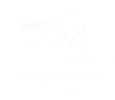 Loreto Sea and Land Tours