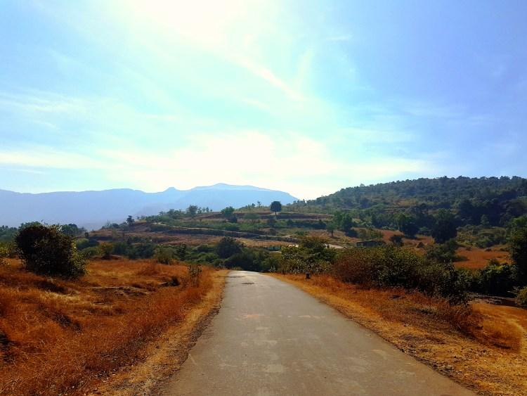 Way to Hilton Shillim Estate