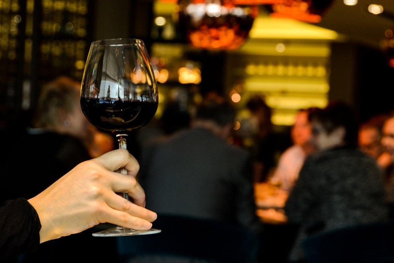 curso de cata de vinos consejos previos