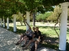 mendoza-2_parc-saint-martin_dylan-et-kate
