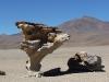 sud-lipez_troisieme-jour-21_desert-de-siloli_arbre-de-pierre