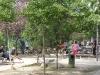 activites-dans-le-parc