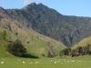de-blenheim-a-rai-valley-2
