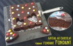 Gâteau au chocolat fondant fondant fondant