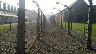 Photo of Auschwitz : le Luxembourg représenté lors des cérémonies commémoratives