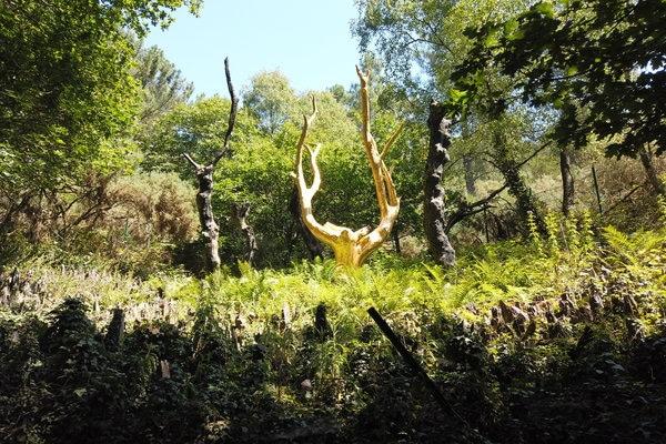arbre d'or à brocéliande