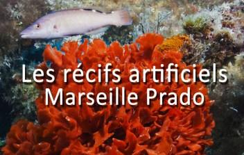 recifs_prado