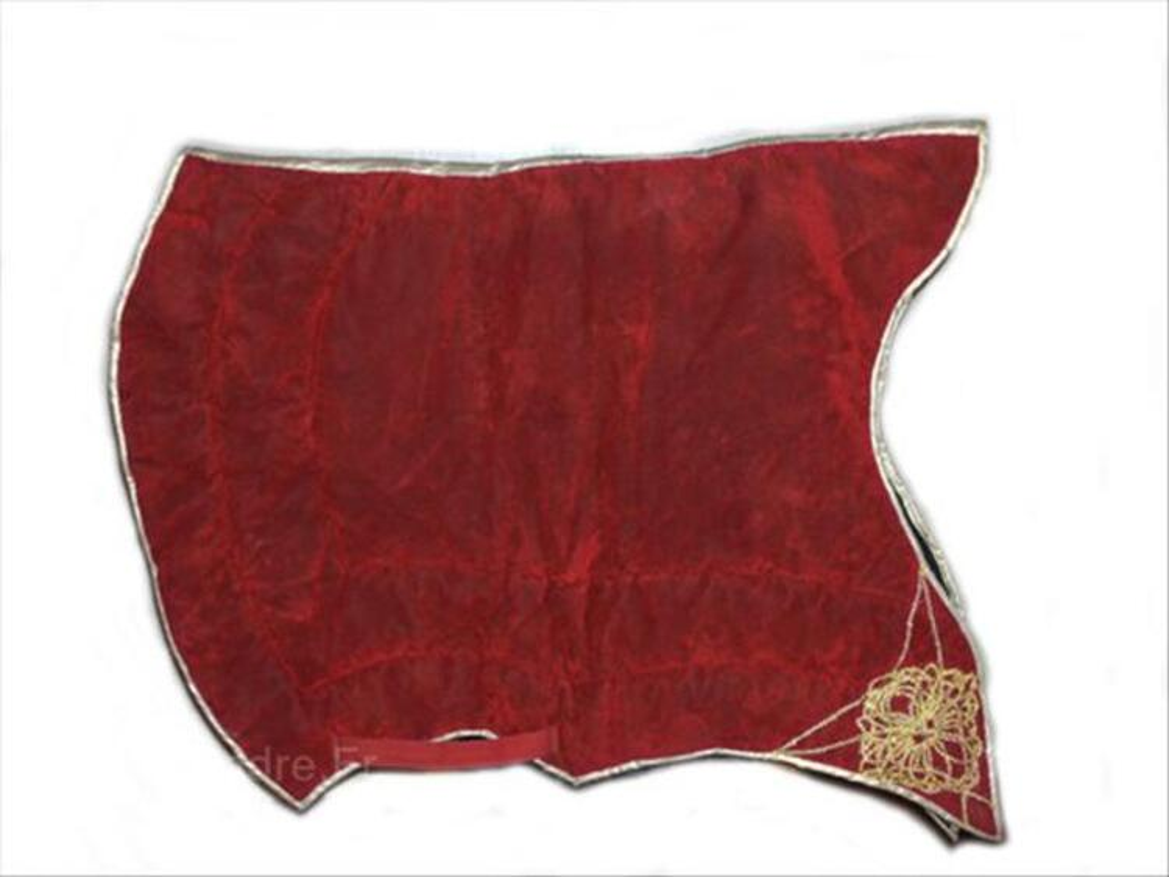magnifique tapis de selle espagnol