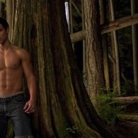 Are <i>Twilight: New Moon</i>'s Muscled Wolf Boys a Pack of Gays?