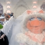 Kermit The Frog Sings A Marriage Equality Parody Of The Muppets' 'Rainbow Connection' – VIDEO