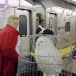 Harry Potter Wanders Penn Station, Looking for Platform 9 3/4: VIDEO