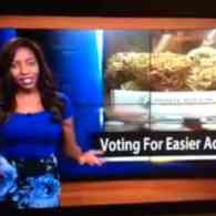 Alaska News Reporter and Marijuana Advocate Quits On-Air In Dramatic Fashion: WATCH