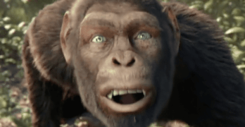 coldplay apes