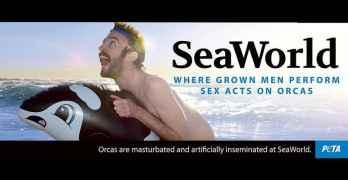 peta seaworld