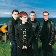 the cranberries (2)