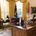 trump working photo