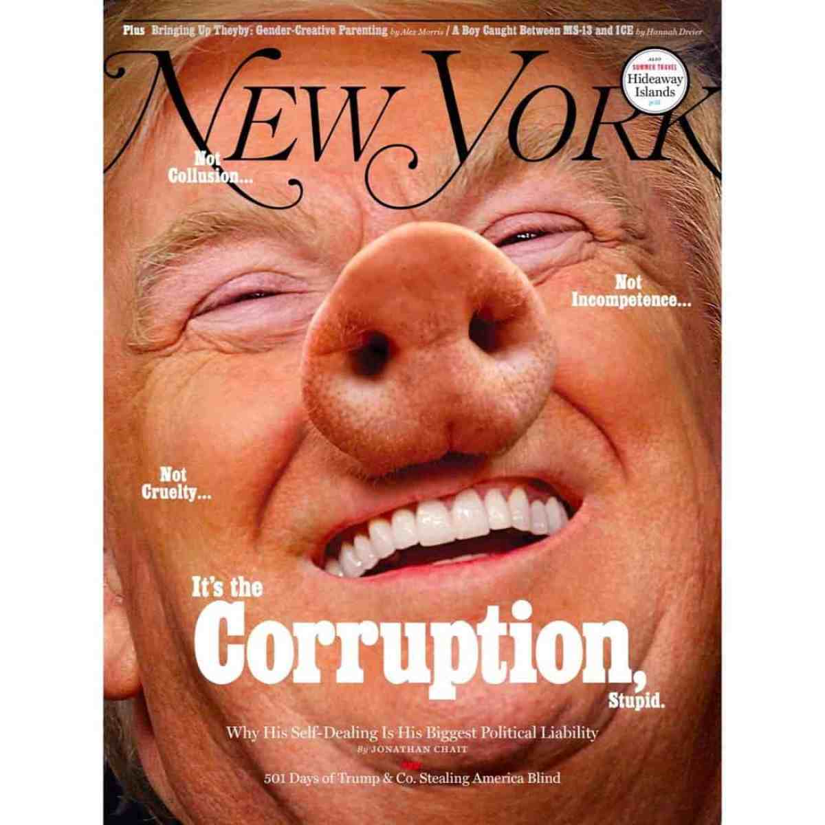 pig trump
