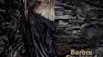 Barbra Streisand Trump Walls