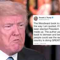 Donald Trump Attacks Bob Woodward Book: I Don't Talk Like That and 'If I Did I Would Not Have Been Elected'