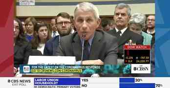 congress Anthony fauci