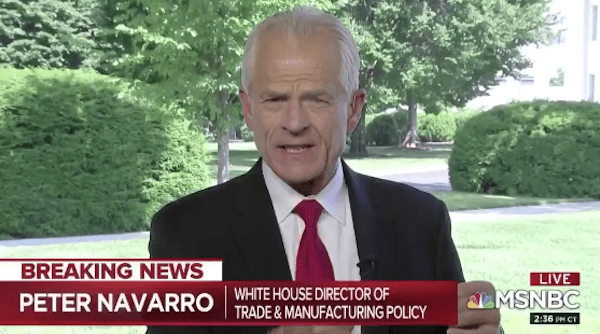 Navarro: China 'Spawned' COVID-19 in a Lab, Then Sent Infected ...