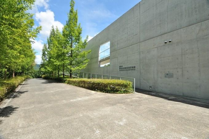 横倉山自然の森博物館│越知町公式ホームページ