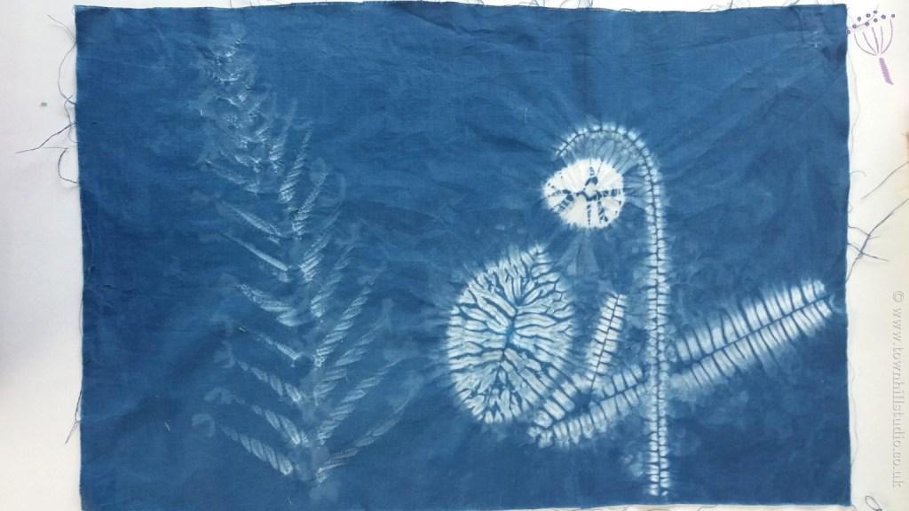 shibori fern (1)
