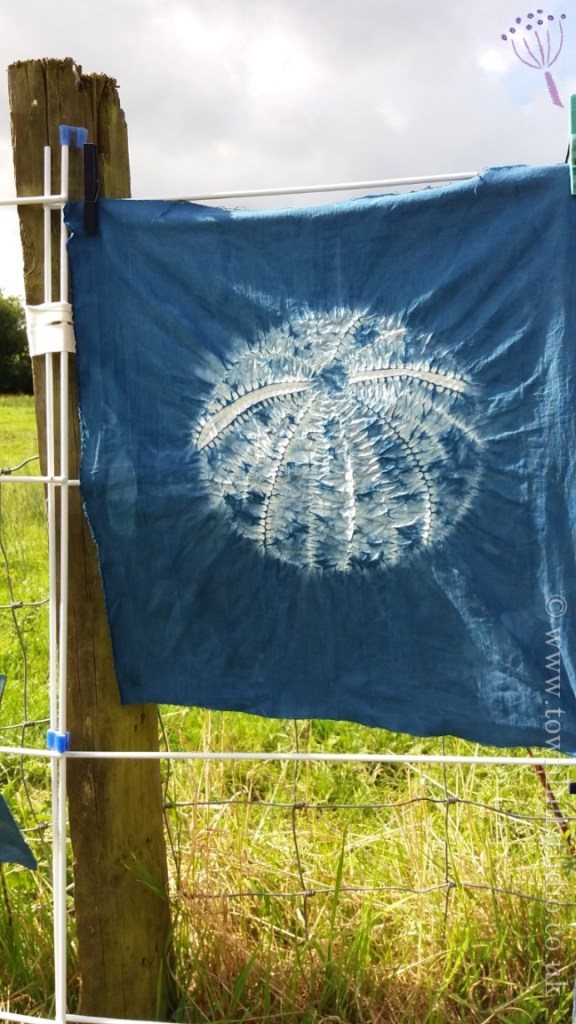 shibori sea urchin stititching and design (1)