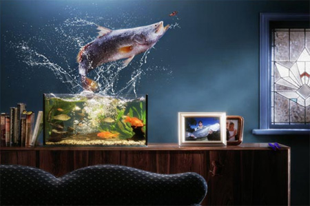 Creative Photography by Mike Skelton 2