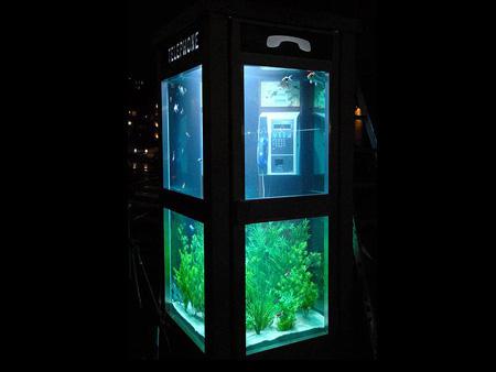 Desain Akuarium Ruang Tamu  15 akuarium yang kreatif zona ik n