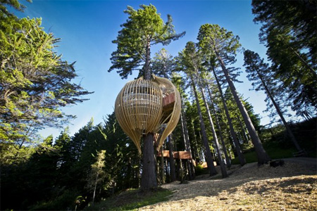 Treehouse Restaurant in New Zealand