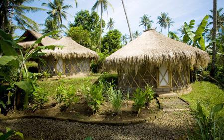 Bali Green School