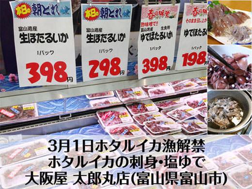 3月1日ホタルイカ漁解禁 刺身・塩ゆで 大阪屋 太郎丸店