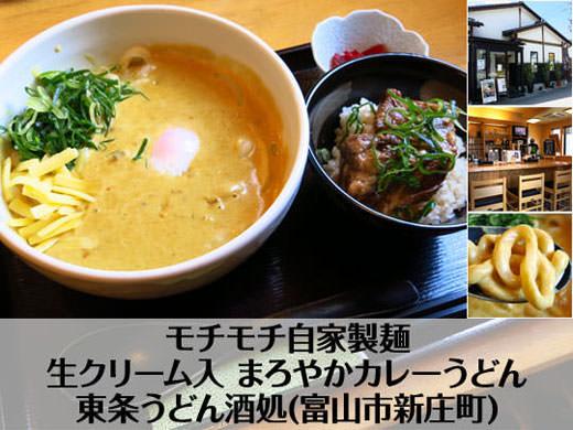 東条うどん酒処 自家製麺 生クリーム入 まろやかカレーうどん