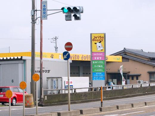 ワイズドギー 射水大島店 トリミング&北陸最大級室内ドッグラン
