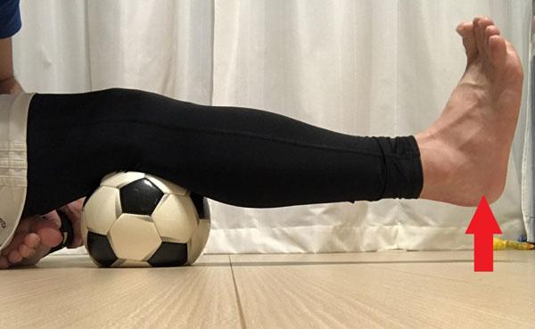 大腿骨四頭筋の筋力トレーニング